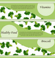 colorful broccoli label in sketch style vector image vector image