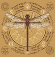 hand drawn dragonfly with old magic symbols vector image
