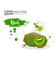 kiwi hand drawn watercolor fruit on white vector image