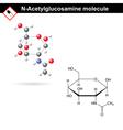 N-Acetylglucosamine NAG molecule vector image vector image