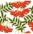 red rowan berries seamless pattern template vector image vector image