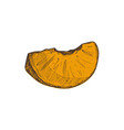 fresh pumpkin slice hand drawn isolated icon vector image