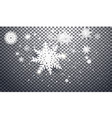 heavy snowfall snowflakes in different vector image