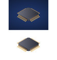 microchip processor isolated on white and dark vector image vector image