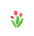 simple bouquet with spring garden blooming vector image vector image