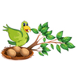 A green bird at the branch of a tree vector image