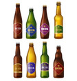 beer bottles labels alcohol cold drinks vector image