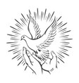 hands released white dove into sky tattoo vector image