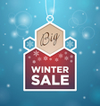 Pendant Big winter sale beige and wine colored vector image vector image
