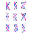 set of dna thread like chains colorful banner vector image