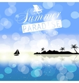 Summer holidays background vector image vector image