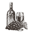 wine logo design template grape or alcohol vector image vector image