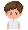 cute happy brunette boy vector image