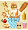 different parts chicken product fast food vector image