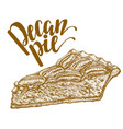 hand drawn of pecan pie vector image