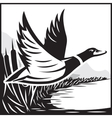 Monochrome with flying wild duck over vector image vector image