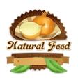 Ripe onion label design vector image vector image