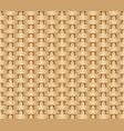 seamless woven background of straw vector image vector image