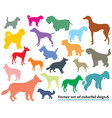 set of colorful dogs silhouettes-6 vector image