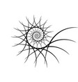 spiral design elements abstract lines black and vector image