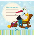 stork knits baclothes vector image