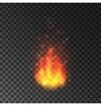 Burning fire with sparks Blazing flames vector image vector image