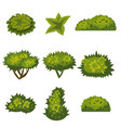 set of bushes in cartoon style for decoration on vector image
