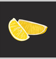 slices of fresh lemon on a vector image vector image