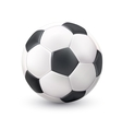 Soccer Ball Realistic White Black Picture vector image vector image