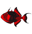 trigger fish vector image vector image