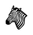 zebra head mascot vector image vector image