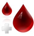 Blood drop isolated on white background vector image