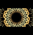 elegant golden patterns on black background vector image