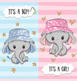greeting card with cute elephant boy and girl vector image vector image