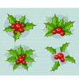 holly-leaves vector image vector image