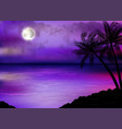 llustration tropical beach at night vector image