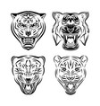set tiger head vector image