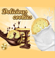 advertising banner for chocolate sandwich cookies vector image