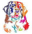 colorful decorative portrait of bernese mountain vector image vector image