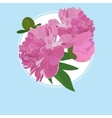 Greeting card with peony flower can be used as vector image