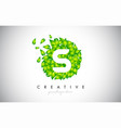 s green leaf logo design eco logo with multiple vector image