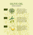 vertical poster get olive oil pictures for three vector image