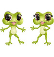 beautiful humanoid frog vector image vector image