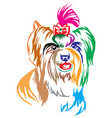 colorful decorative portrait of dog biewer vector image vector image