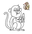 monkey eating a banana vector image vector image