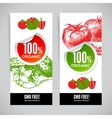 Set of banners with hand drawn sketch vegetable vector image