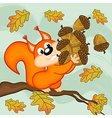 squirrel gathers acorns vector image vector image