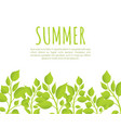 summer banner template with fresh thick weed grass vector image