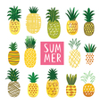 Ananas Collection vector image