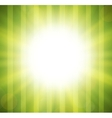 Abstract green blurry background with overlying vector image vector image